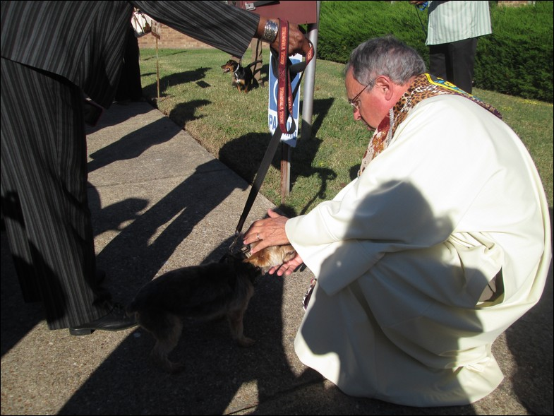 AnimalBlessing016
